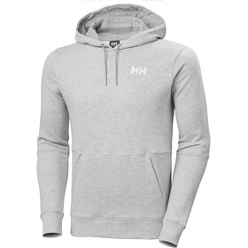 Helly Hansen Active Hoodie Men, grey melange
